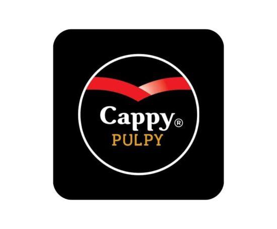 Cappy in asortiment
